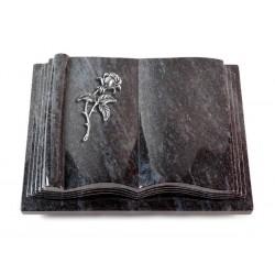 32 Grabbuch Antique/Orion (Alu Rose 2)