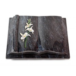 34 Grabbuch Antique/Orion (Color Orchidee)