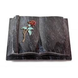 35 Grabbuch Antique/Orion (Color Rose 2)
