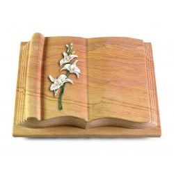 58 Grabbuch Antique/Rainbow (Color Orchidee)