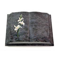 154 Grabbuch Livre Pagina/Orion (Color Orchidee)