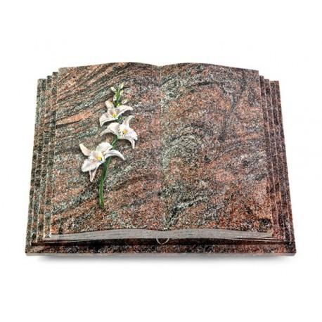 166 Grabbuch Livre Pagina/Paradiso (Color Orchidee)
