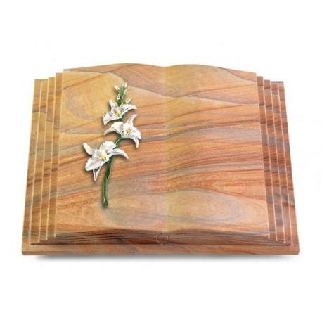 178 Grabbuch Livre Pagina/Rainbow (Color Orchidee)
