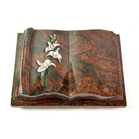 Grabbuch Antique/Aruba (Color Orchidee)