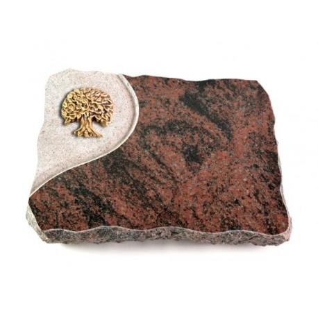 27 Grabplatte Folio/Aruba (Bronze Baum 3)
