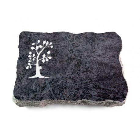 32 Grabplatte Orion (Baum 1)