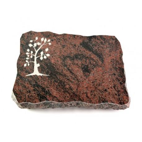 Grabplatte Aruba (Baum 1)