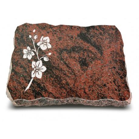 Grabplatte Aruba (Ökoline Blume 1)
