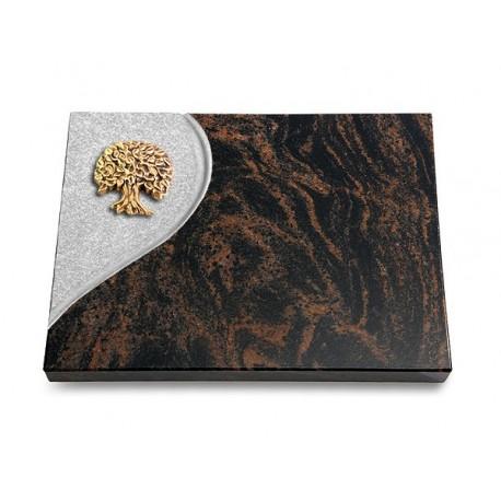 27 Grabtafel Folio/Aruba (Bronze Baum 3)