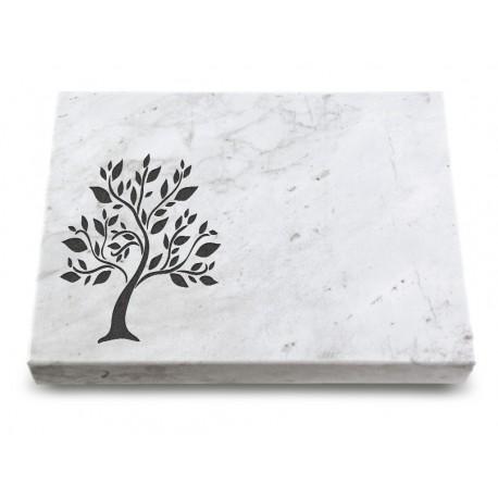 158 Grabtafel Marmor (Ökoline Baum 2)